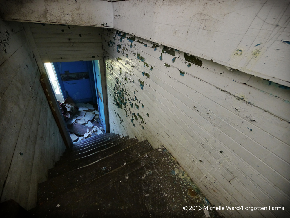 blue_hallway_web