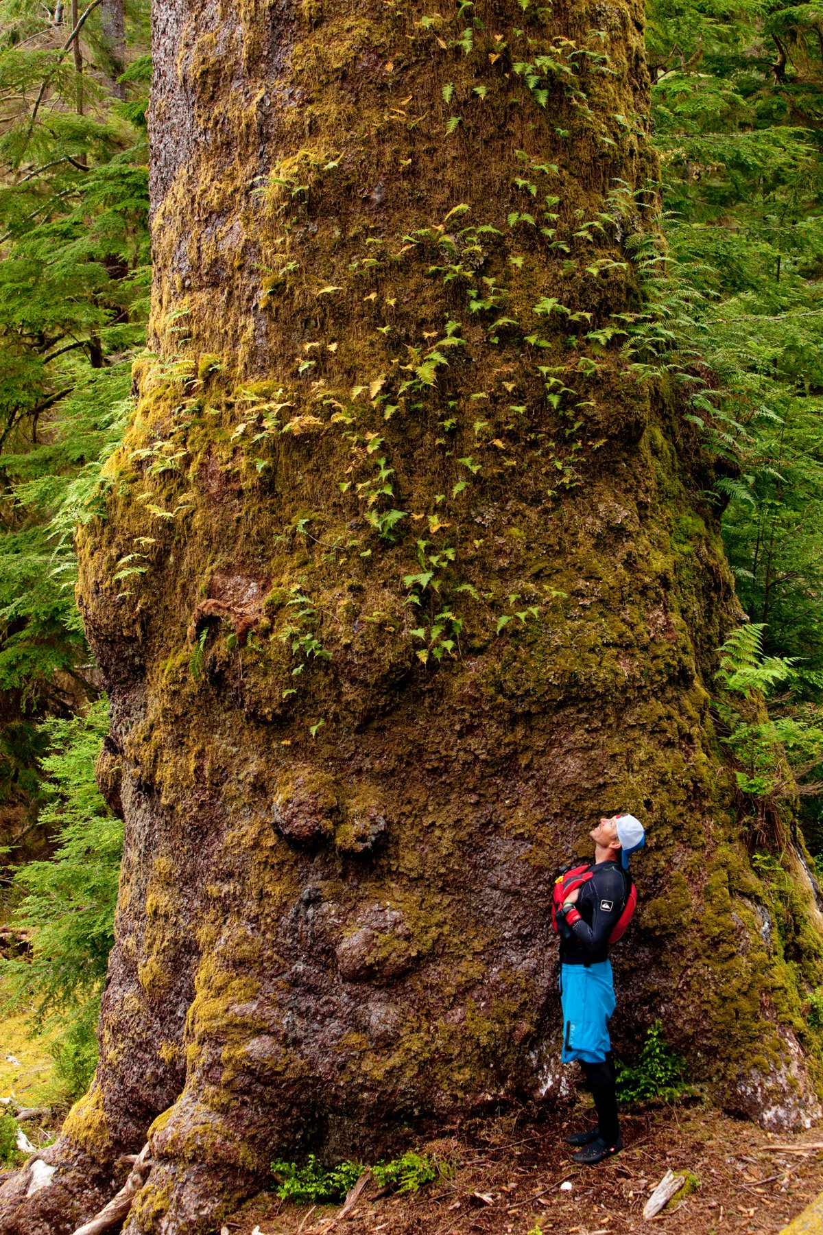 Norm Hann sizes up a  prominent Haida Gwaii resident. Photo by Nicolas Teichrob / STAND film.