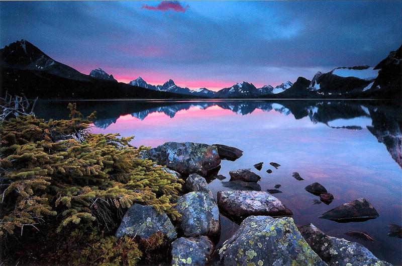 Jasper. Photo by Robert Berdan.