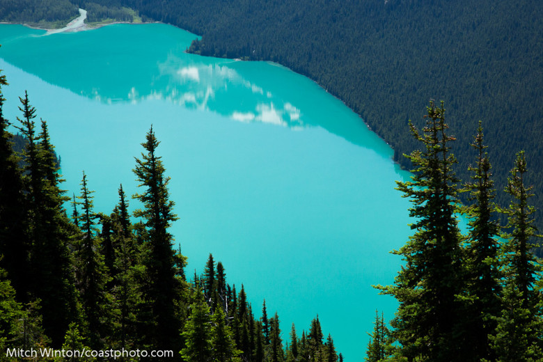 Photo by Mitch Winton. Courtesy Whistler Blackcomb.