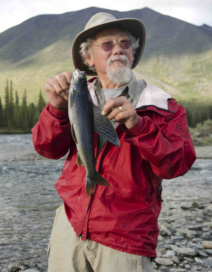 David Suzuki, with a grayling from the Hart River. Suzuki and members of his family paddled the Peel watershed's Hart River in the summer of 2011. After the journey, Suzuki joined First Nations in their call to protect the Peel watershed. Photo by Marten Berkman/courtesy ProtectPeel.ca