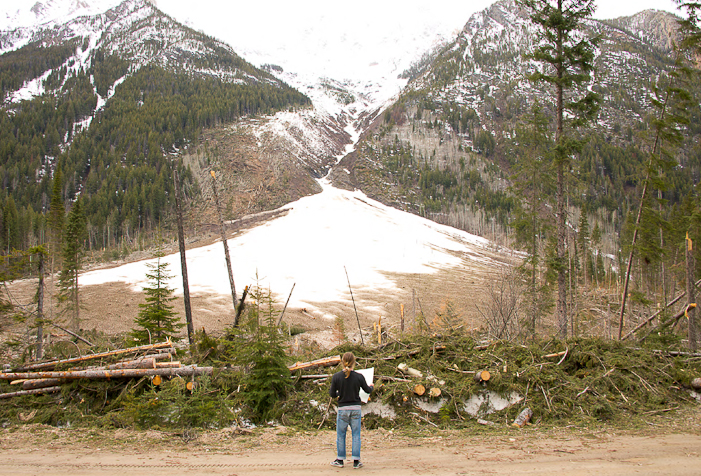 Pro skier Chad Sayers contemplates the remains of one of the many destructive avalanches of winter '13-'14 in the Jumbo area.