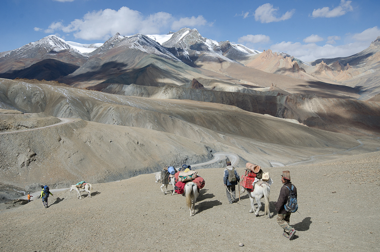 Ladakh is a sere, desiccated lands, lying the rainshadow of the Himalaya, yet a co-operative agrarian society has thrived here in isolation for millennia, growing barely and raising livestock using glacial meltwater. Here, our small party sets off across the spine Zanskar range. BRUCE KIRKBY PHOTO.