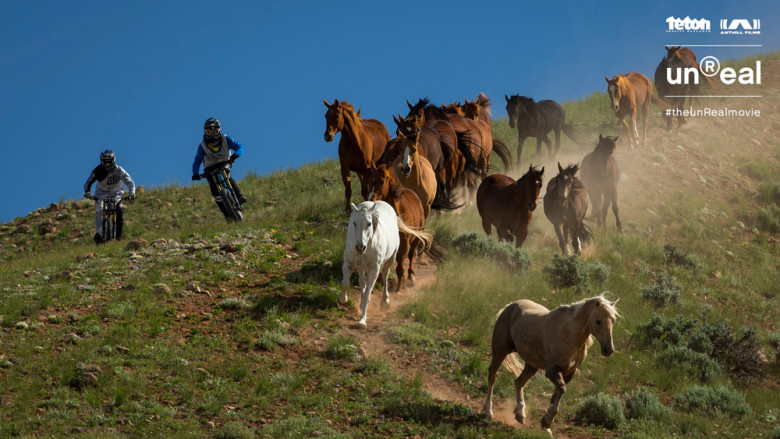 bikers_with_horses