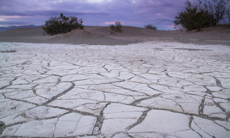 elisabeth-brentano-dunes-5