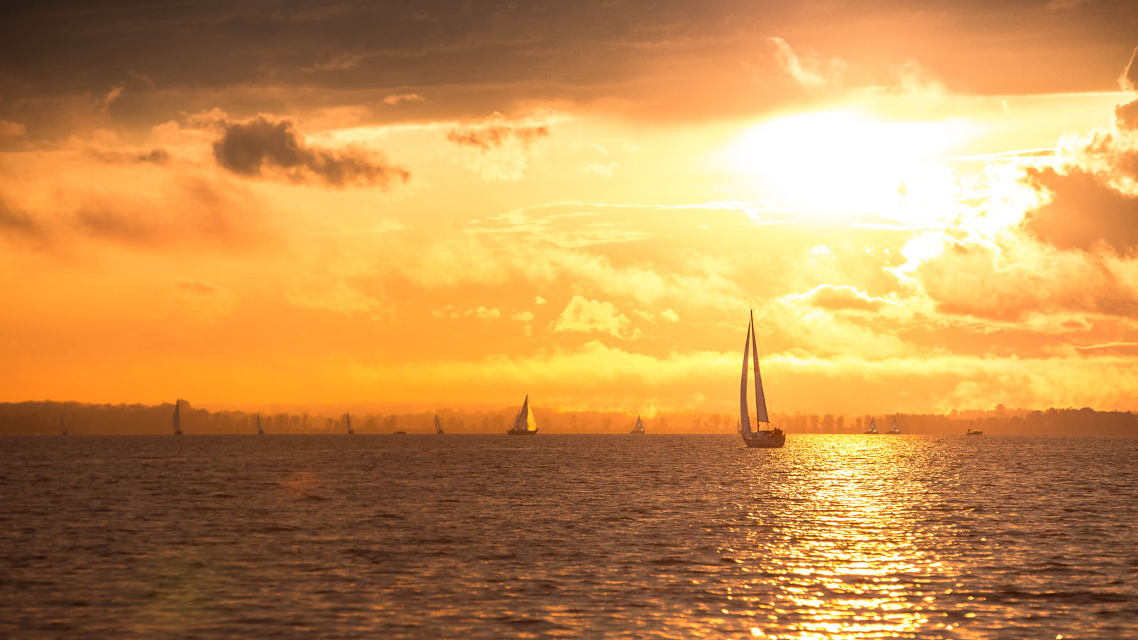 A sailboat returns to the Brittiana Yatch Club after an evening of racing in Ottawa Ontario