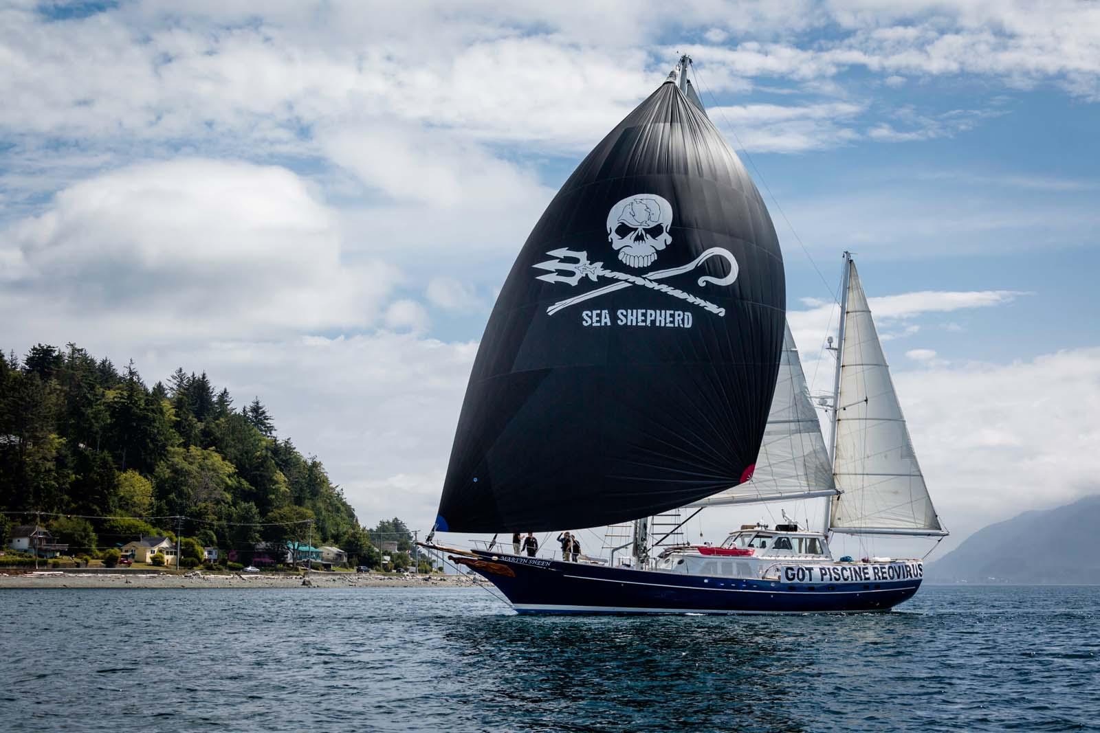 160805-sa-ms-sheen-sails-into-alert-bay-0570