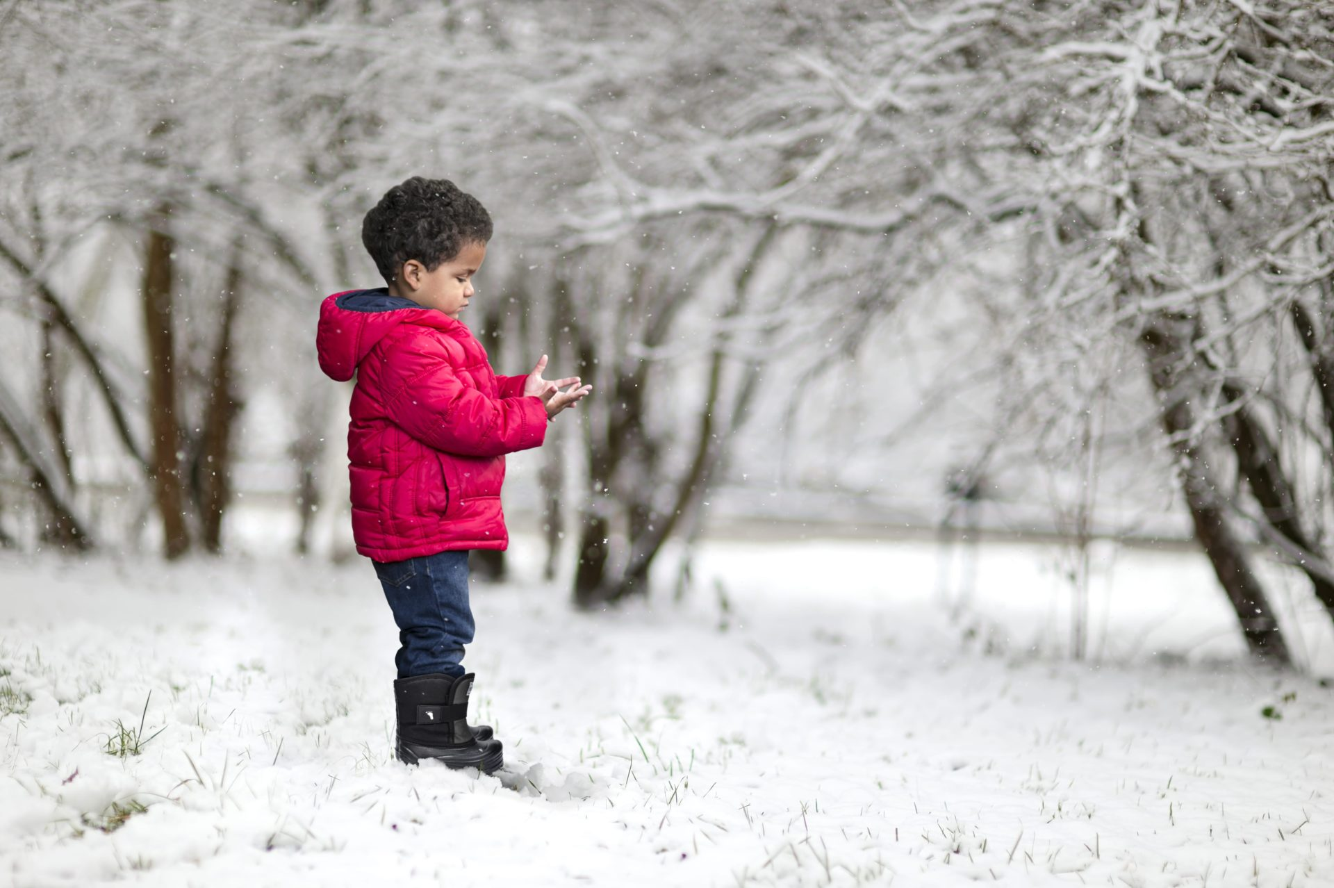 Young kid in snow