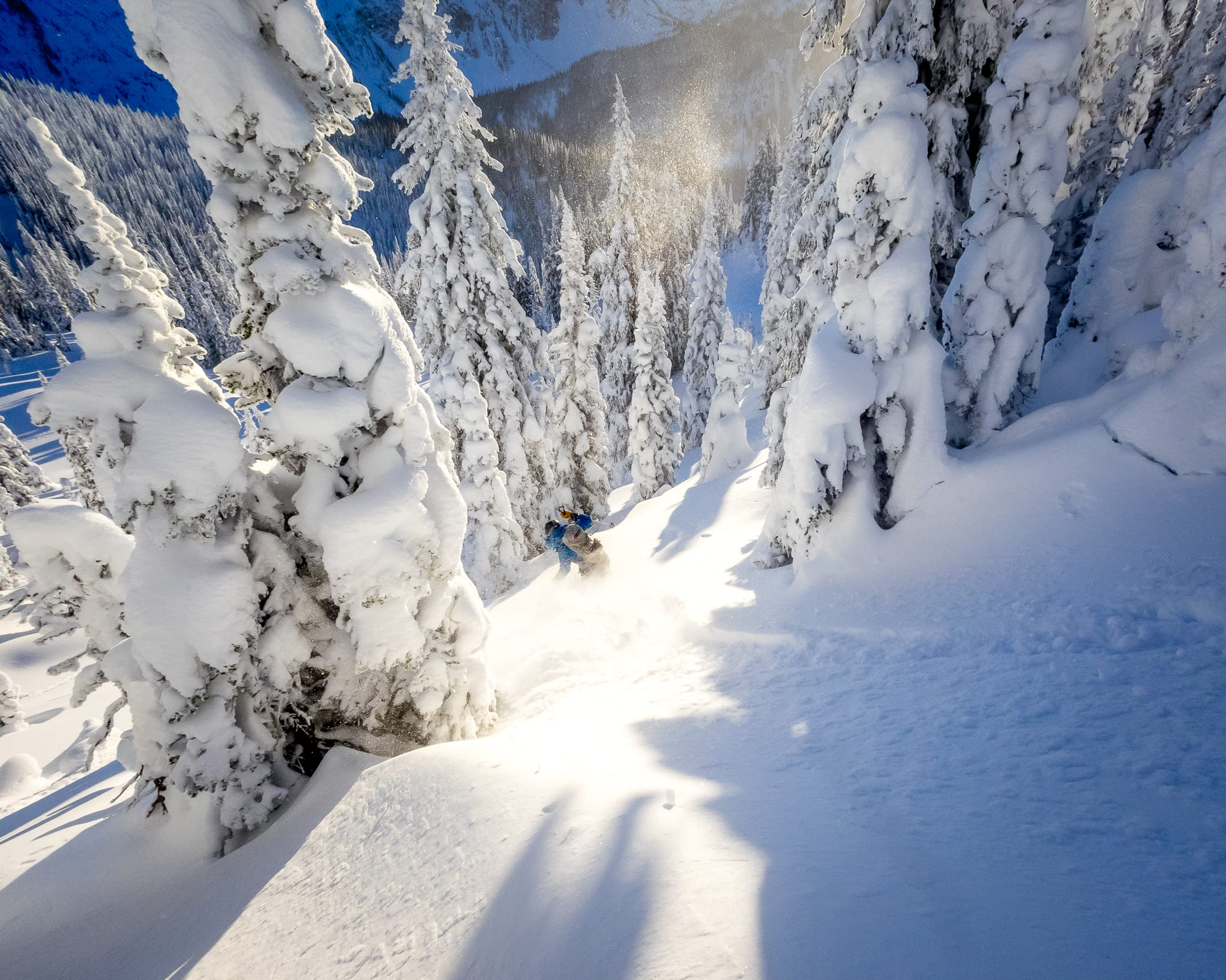 Trophy Hut skiing in powder