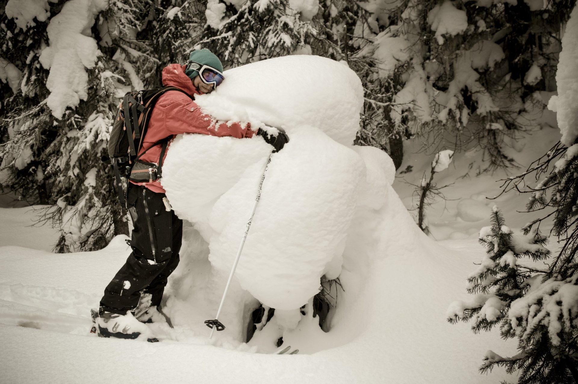 Holly hugging snow