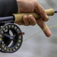 Fly rod in Grey Bruce Ontario