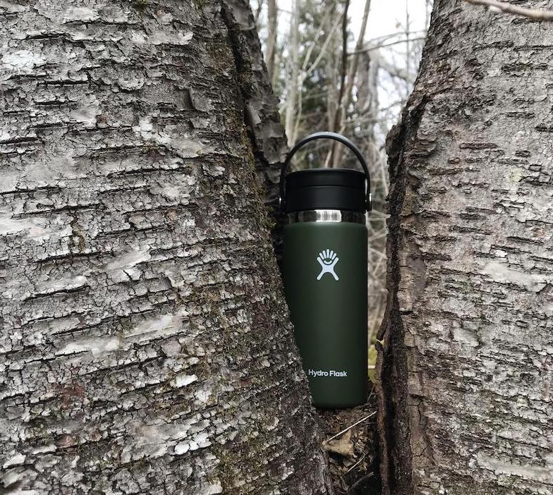 Hydro Flask Flex Sip Mountain Life