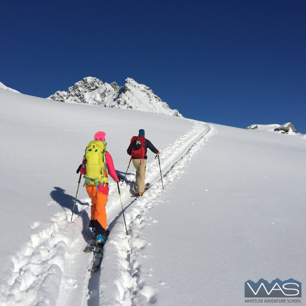 Whistler Adventure School ski touring guide training B.C. backcountry