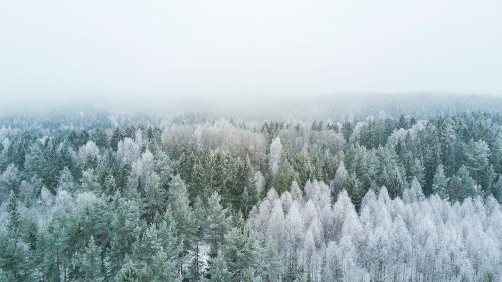 Reanimate-your-Winter-with-Friluftsliv-and-Smartwool-Nesoddtangen-Akershus- Norway-atle-mo-unsplash