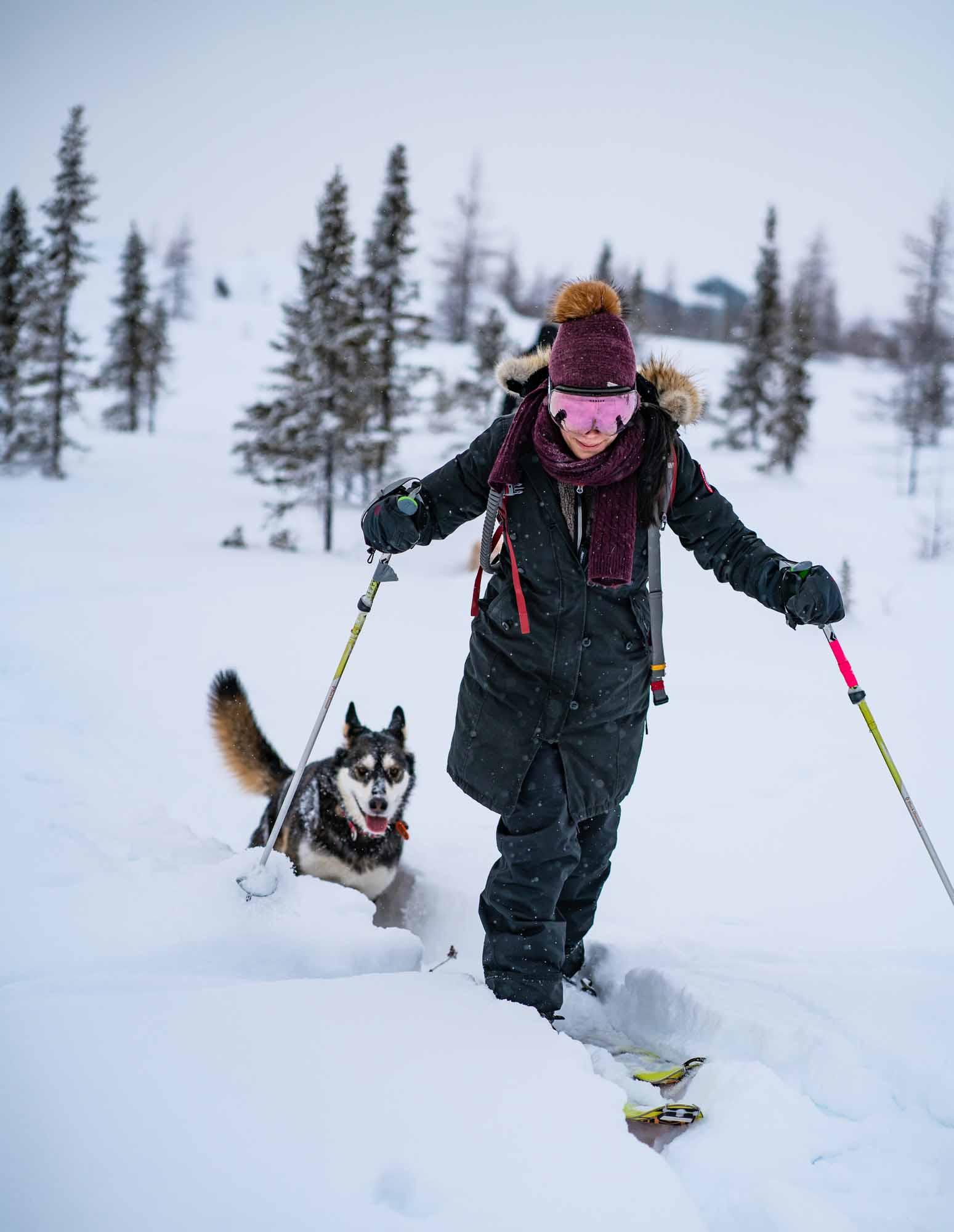 Arctique-quebecois-Lecons-de-Kuujjuaq-Quebecs-Arctic-Daniel-Keith-Cooper-NUNAVIK-2020-skijoring