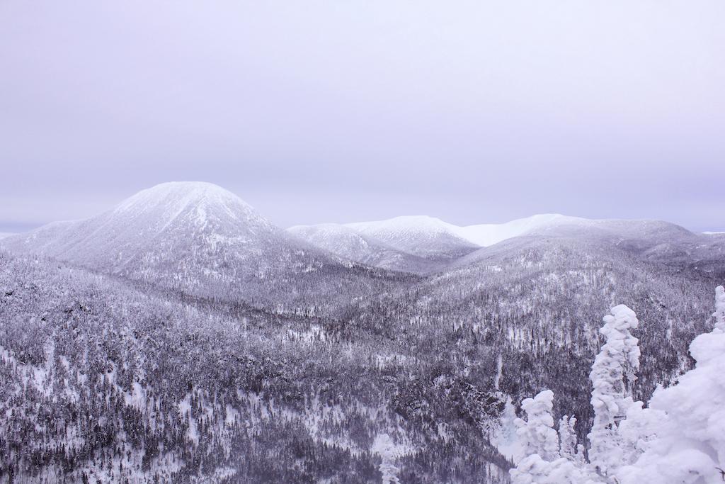 Bonjour-Quebec-Parc-national-de-la-Gaspesie-photo-by-Gregory-Cloutier