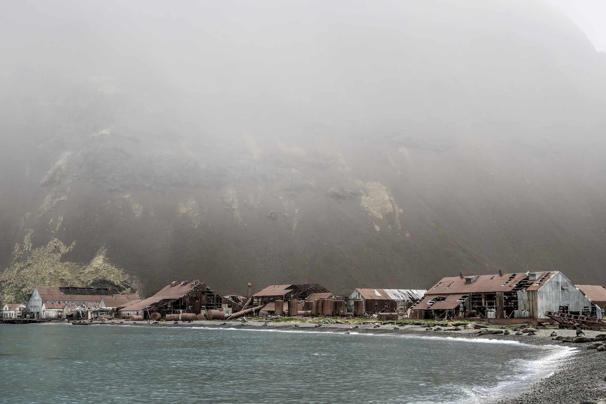 Island-of-Life-Restoring-and-Reclaiming-One-of-Earths-Most-Untamed-Places-photo-by-Ben-Haggar-abandoned-whaling-station