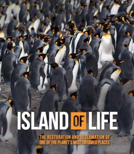 ML-Coast-Mountains-Winter-Spring-21-Issue-Out-Now-penguins-grab