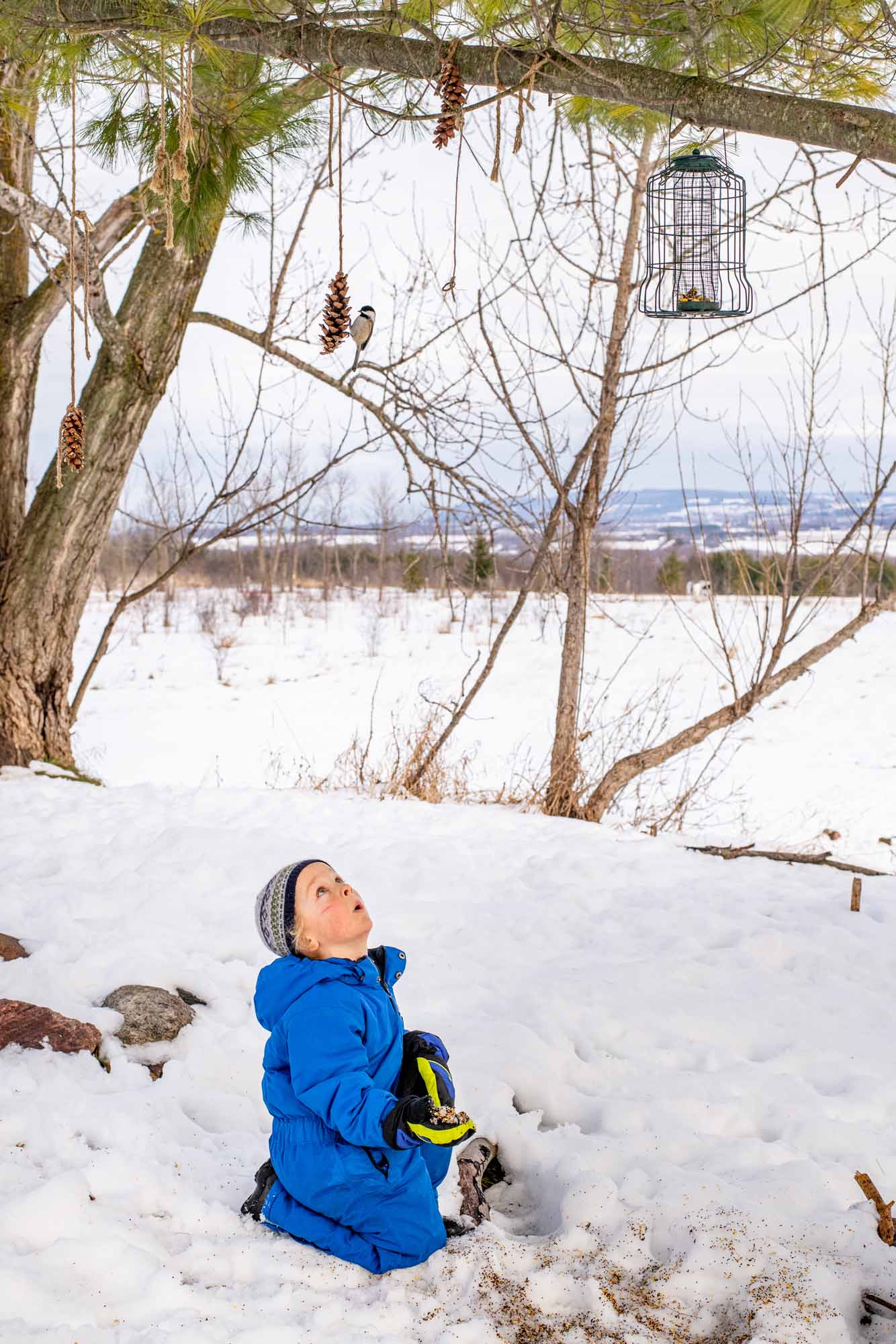 Nature-as-Teacher-Outdoor-Schools-Bring-Learning-Into-the-Elements-photo-by-Kristin-Schnelten-enticing-birds